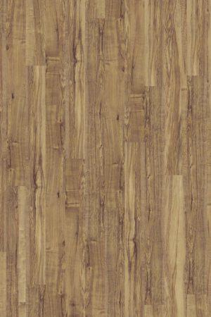 2816 Wild Oak