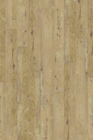 2824 Wormy Light Oak