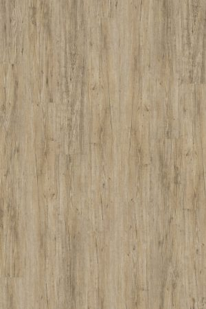 2825 Wild Pine