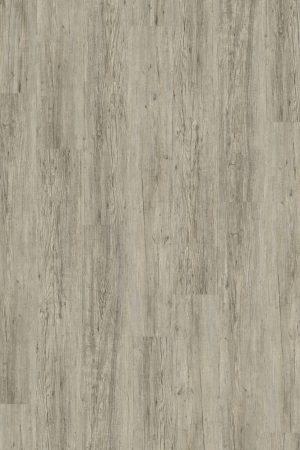 2834 Grey Pine