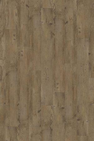2837 Bourbon Spruce