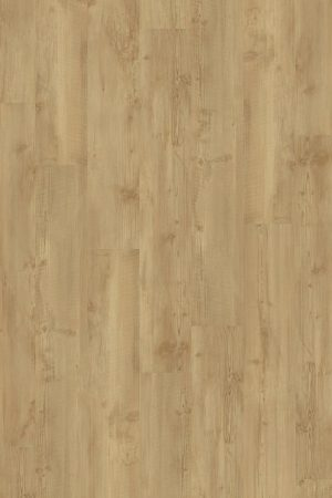 2855 Golden Pine