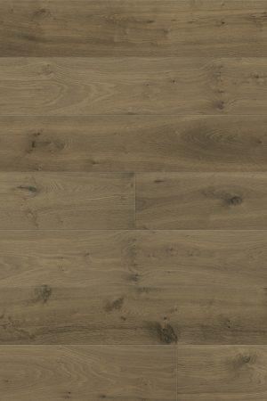 AE569 szczotkowany dąb miodowy Villa V4